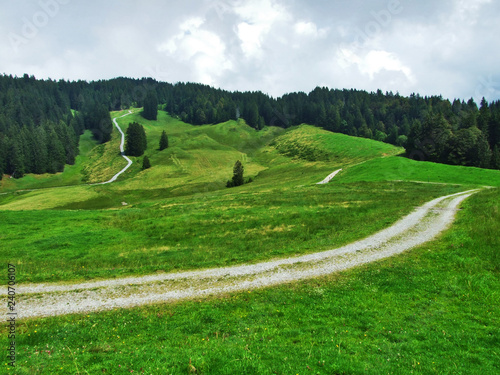 Foto op Plexiglas Groene Picturesque hills, forests and pastures in Ostschweiz - Canton of Appenzell Ausserrhoden, Switzerland