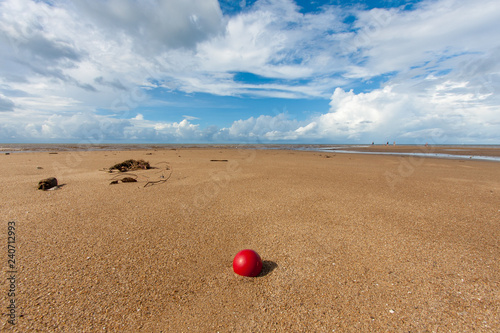 Fotografie, Obraz  A red fishing net ball lies lonely on a tropical beach
