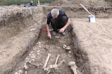 Archaeological Excavation. The Archaeologist In A Digger Process, Researching The Tomb, Human Bones, Part Of Skeleton And Skull In The Ground. Hands With Tools. Close Up, Outdoors, Copy Space.
