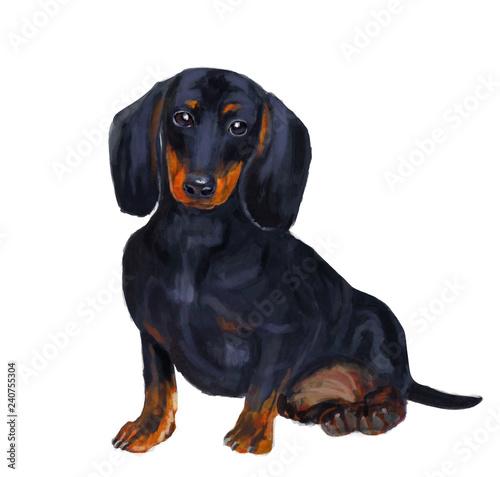 Foto  Artistic drawing of a dachshund. Digital art