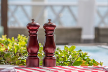 Two Elegant Brown Wood Condiments Backlit By Warm Sunshine On A Checkered Red And White Table Cloth With Greenery Behind In An Alfresco Restauraut