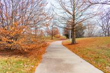 Autumn Trail Near Soldier Fiel...