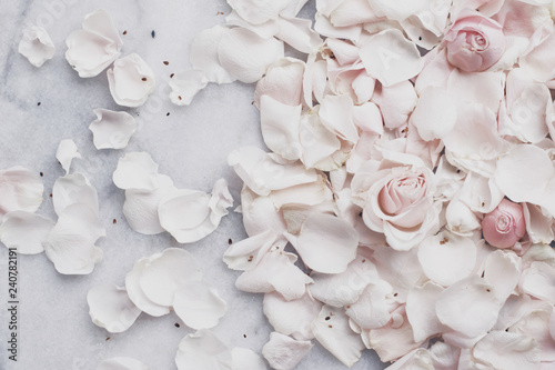 Poster Fleur rose flower petals on marble - wedding, holiday and floral garden styled concept