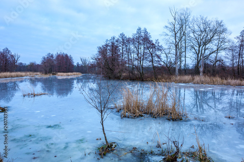 Photo  winter lake in forest
