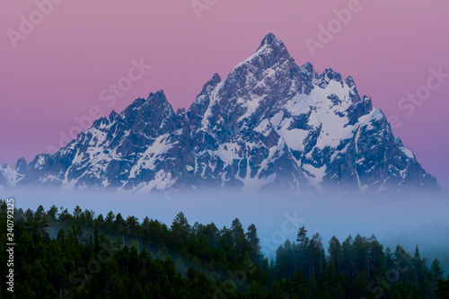 Fotografie, Tablou Foggy Forest and Grand Teton