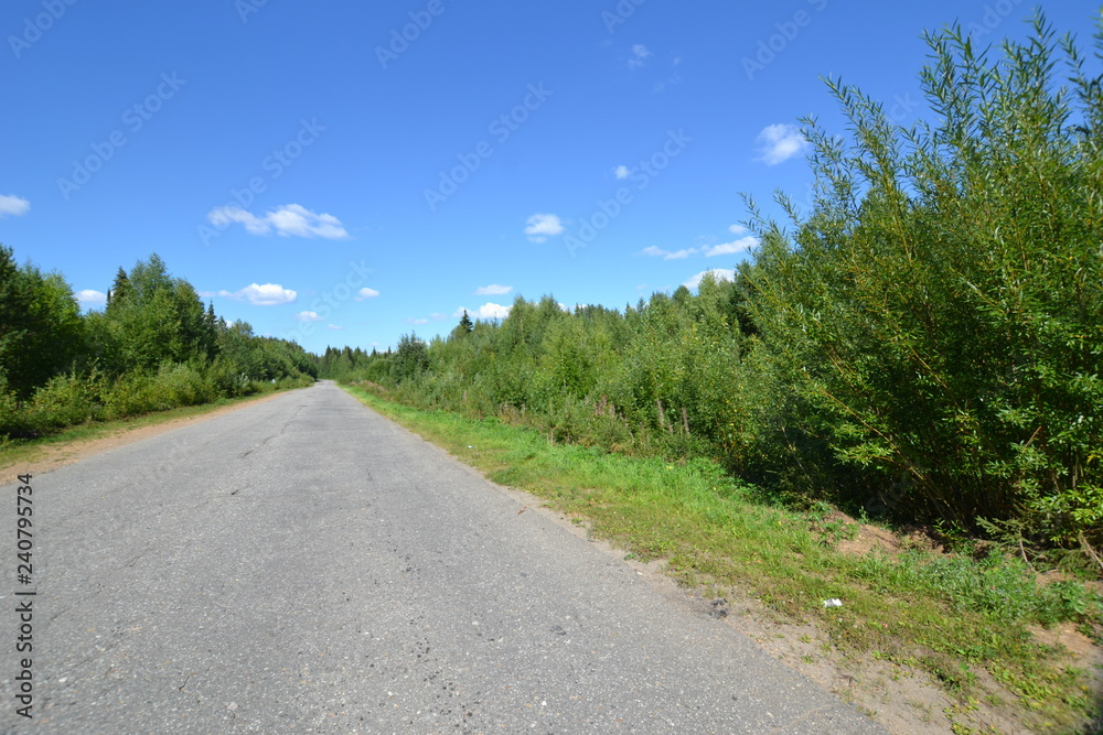 Fototapeta road to the unknown - obraz na płótnie