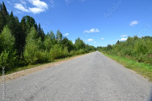 Fototapeta lonely road to the harsh North obraz na płótnie