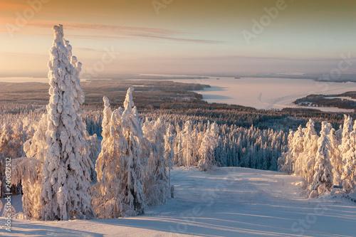 Ski resort snow covered landscape Poster Mural XXL