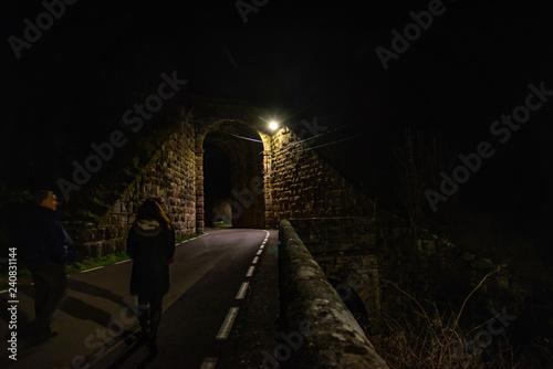 Fotografie, Obraz  Cantabria pueblo de Pesquera en España  .