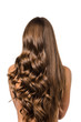 canvas print picture - back view of girl with curly and straight long brown hair isolated on white