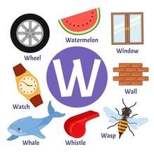 Vector Cute Kids Animal Alphabet. Letter W. Set Of Cute Cartoon Illustrations.