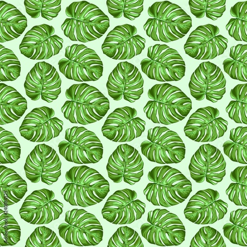 Poster Draw Monstera Tropical Leaves Seamless Textile Patten Vector Design