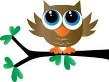 A Cute Little Brown Owl Sittin...