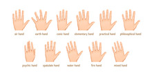 Vector Set Of Different Forms Of Palms For Palmistry