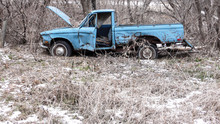 Old Abandoned Farm Truck In The Woods