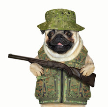 The Dog In Military Uniform Is Holding A Gun. White Background.