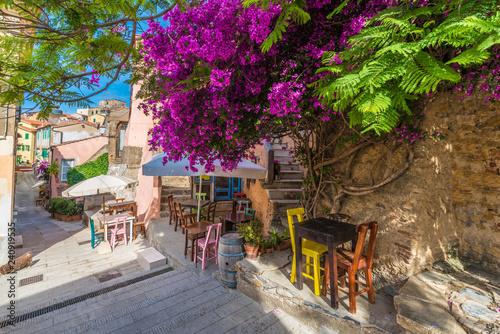 Naklejka premium Ulica z kwiatem na Capoliveri wiosce w Elba wyspie, Tuscany, Włochy, Europa
