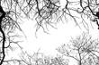 jesień, drzewa, przyroda, liście, krajobraz