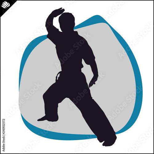Martial art colored simbol design. Karate emblem. Canvas Print
