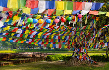 Prayer Flags Tying All The Bod...