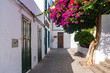 Beautiful typical white houses in Haria with purple flowers, Lanzarote, Canary Islands, Spain