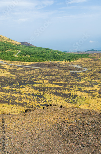 Fotografie, Obraz  Panoramic view of the Etna valley, where the road leading to the central crater flows