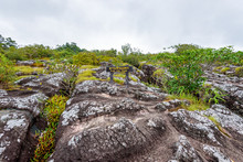 Lan Hin Teak, Large Stone Courtyard With Strange Stone Shapes Is A Famous Natural Tourist Attractions Of Phu Hin Rong Kla National Park, Phitsanulok Province, Thailand