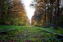 Alte Eisenbahnschienen In Eine...