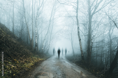A group of eerie ghostly figures emerging from the fog on a spooky forest  road in winter Wallpaper Mural