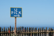 U Pick Sign And A Rustic Fence At A You Pick Your Own Strawberry Fruit Farm In Northern California On A Sunny Day.