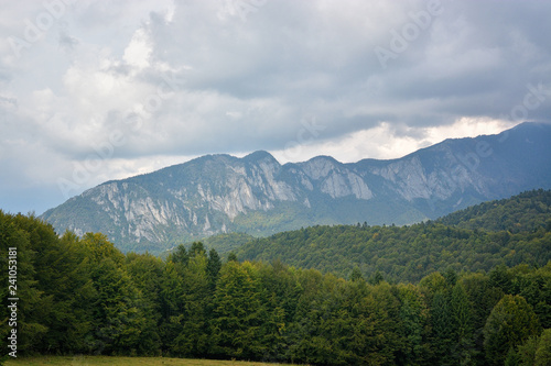 Foto op Aluminium Algerije Carpathian mountains summer vintage landscape with blue sky and clouds