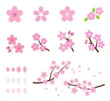 Cherry Tree Icon Set