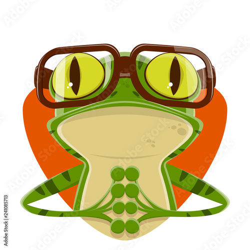 cartoon illustration of a frog with nerd glasses Wallpaper Mural