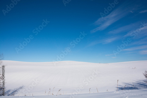 Obraz na plátně  雪原と青空