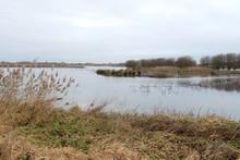 Nature Area Called Groene Jonk...