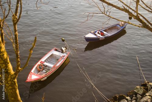 Fotografie, Obraz  Dois barcos em águas do rio pacificas