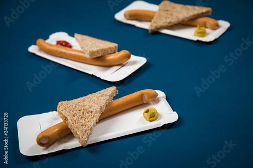 Fotografie, Obraz  Wiener Würstchen mit Vollkorn Brot Scheibe auf Einweg Pappteller mit Senf und Ke