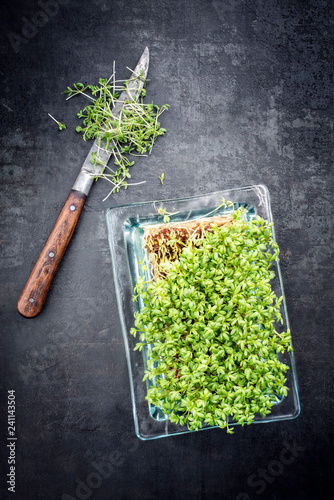 Foto op Canvas Kruiderij Fresh garden cress germ bud with knife as top view on a black board with copy space