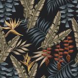 Egzotyczne dżungli bezszwowe czarne tło - 241197306
