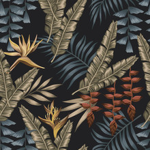 Exotic Jungle Seamless Black Background