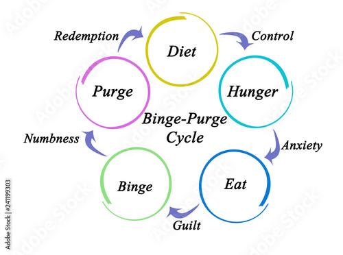 Fotografie, Obraz  Binge - Purge Cycle