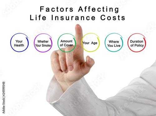 Factors Affecting Life Insurance Costs Fototapet