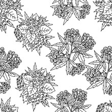 Seamless Vector Autumn Pattern With Red And Orange Berries,pine Cone,nuts,flowers And Leaves. Floral Background.pattern For Fashion,fabric And All Prints On White Background.