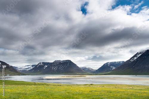 Deurstickers Noord Europa Westfjords in Iceland near Thingeyri
