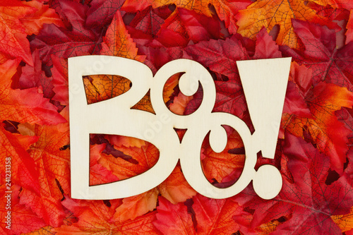 Fotografie, Obraz  Halloween greeting Boo with fall leaves