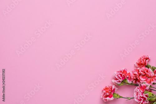 Foto op Canvas Bloemen Pink wallpaper with pink flowers