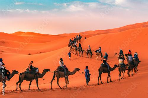 Staande foto Marokko Sahara desert tour, Camel caravan in Merzouga, Morocco