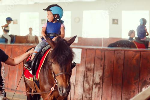 Fotografie, Obraz  Portrait of little girl and brown Horse