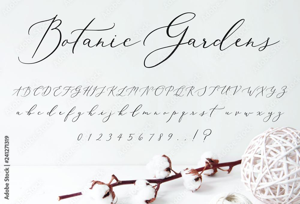 Fototapeta Botanic Gardens Script Font alphabet for Wedding Invitations