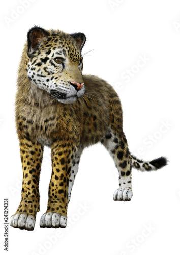 Poster Leopard 3D Rendering Big Cat Jaguar on White